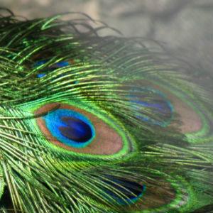 Contorno dos Olhos & Zonas Frágeis